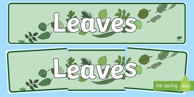 Leaves Display Banner - leaves, leaf, banner, plants, flowers