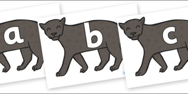Phoneme Set on Panthers - Phoneme set, phonemes, phoneme, Letters and Sounds, DfES, display, Phase 1, Phase 2, Phase 3, Phase 5, Foundation, Literacy