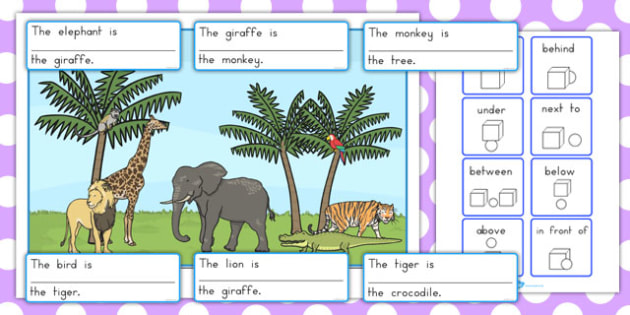 Wild Animal Preposition Scene - Australia, grammar, english, word class, sentences, writing, KS2, KS1