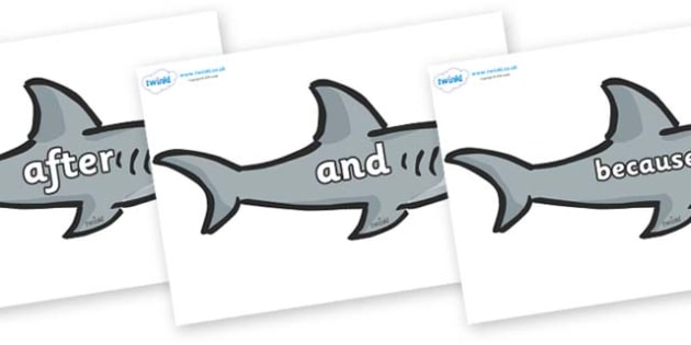 Connectives on Sharks - Connectives, VCOP, connective resources, connectives display words, connective displays