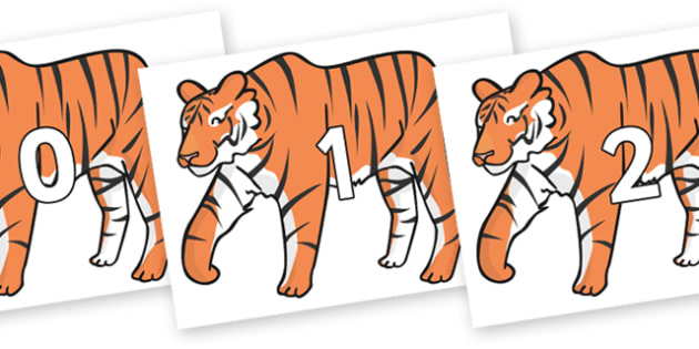 Numbers 0-31 on Chinese New Year Tiger - 0-31, foundation stage numeracy, Number recognition, Number flashcards, counting, number frieze, Display numbers, number posters