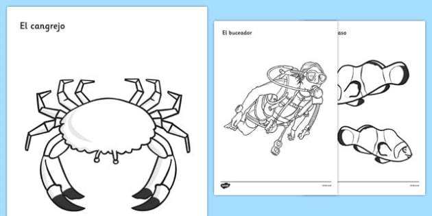 Under the Sea Colouring Posters Spanish - spanish, Under the sea, sea, seaside, activity, posters, colouring, fine motor skills, water, tide, fish, sea creatures, shark, whale, marine, dolphin, starfish, waves, sand