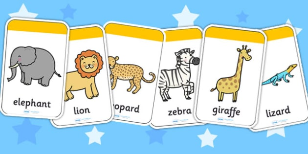 Safari Flashcards - jungle, animals, jungle animals, visual aid