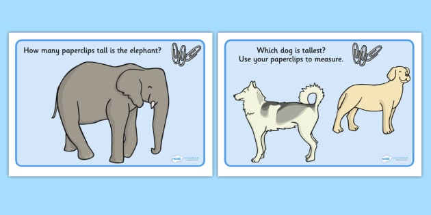 Measuring And Comparing Activity Animals - measuring and comparing activity animals, measuring and comparing, activity, animals, animal, cat, dog, rabbit, measure, compare, comparing, measuring