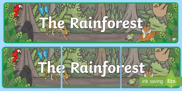 The Rainforest Display Banner (Plain) - Jungle, Rainforest, Topic, Display, Posters, Freize, vines, A4, display, snake, forest, ecosystem, rain, humid, parrot, monkey, gorilla