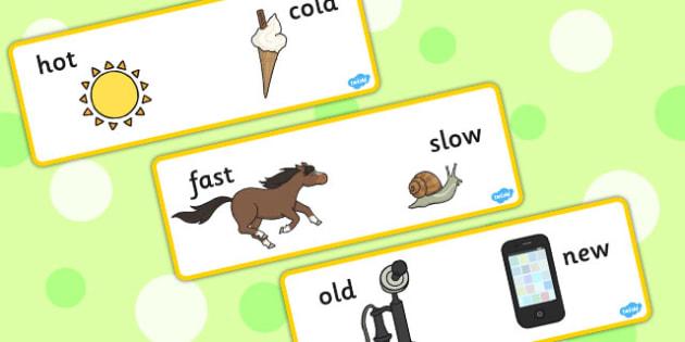 Basic Concept Cards - concepts, visual aid, SEN, SEN cards