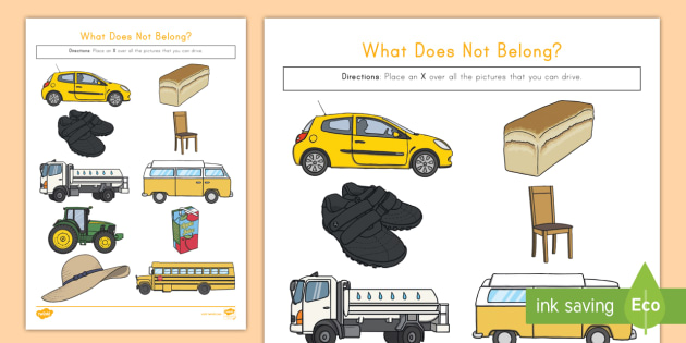 What Does Not Belong Worksheet / Activity Sheet - object