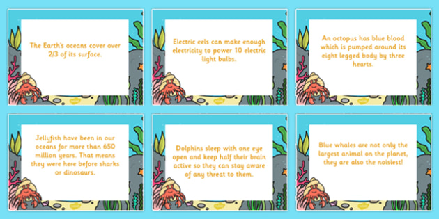 Under the Sea Display Fact Cards - fact, cards, display, sea