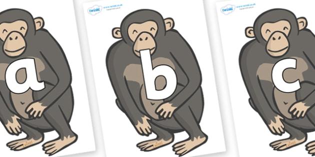 Phoneme Set on Chimpanzees - Phoneme set, phonemes, phoneme, Letters and Sounds, DfES, display, Phase 1, Phase 2, Phase 3, Phase 5, Foundation, Literacy