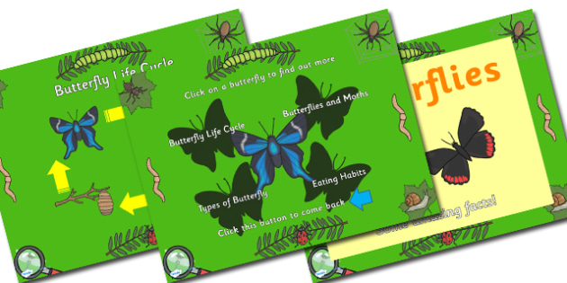 Butterfly Facts and Life Cycle PowerPoint - powerpoint, power point, interactive, butterfly facts, butterfly life cycle, lifecylce, butterfly life cycle powerpoint, powerpoint presentation, presentation, slide show, slides, discussion aid, discussion