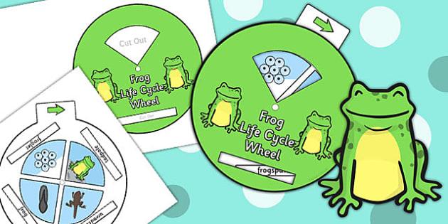 Frog Life Cycle Spin Wheel - life cycles, visual aid, frog, wheel