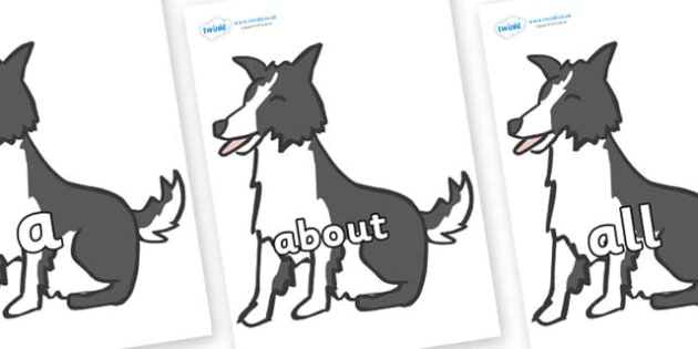 100 High Frequency Words on Sheep Dogs - High frequency words, hfw, DfES Letters and Sounds, Letters and Sounds, display words