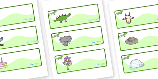Iguana Themed Editable Drawer-Peg-Name Labels - Themed Classroom Label Templates, Resource Labels, Name Labels, Editable Labels, Drawer Labels, Coat Peg Labels, Peg Label, KS1 Labels, Foundation Labels, Foundation Stage Labels, Teaching Labels