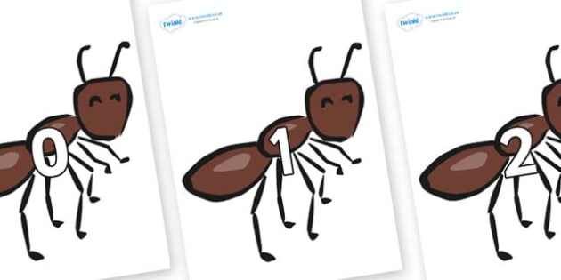 Numbers 0-50 on Ants - 0-50, foundation stage numeracy, Number recognition, Number flashcards, counting, number frieze, Display numbers, number posters