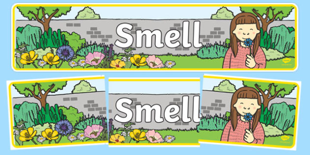 Smell Display Banner