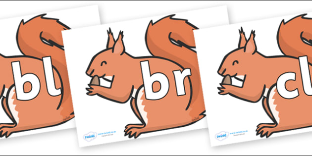 Initial Letter Blends on Red Squirrels - Initial Letters, initial letter, letter blend, letter blends, consonant, consonants, digraph, trigraph, literacy, alphabet, letters, foundation stage literacy