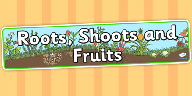 Roots Shoots and Fruits Display Banner - roots, shoots, fruits