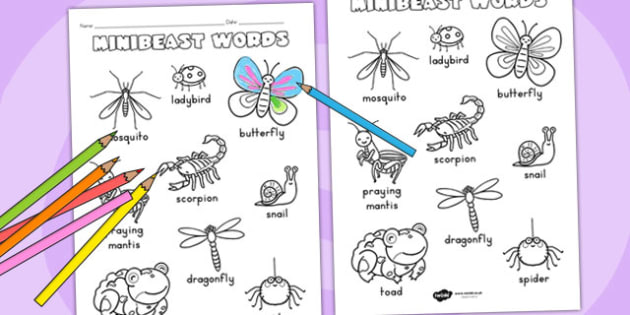 Minibeasts Cute Words Colouring Sheet - fine motor skills, colour