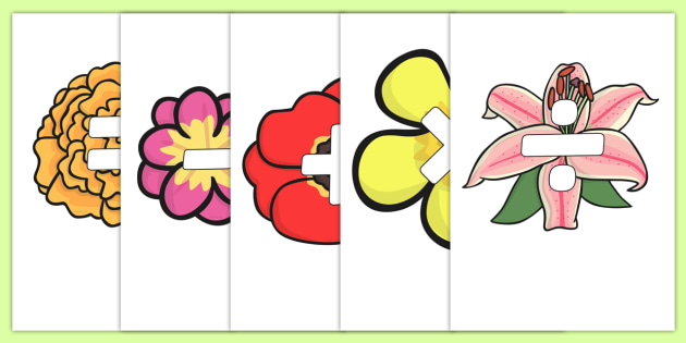 Maths Symbols on Flowers - maths symbols, mathematic symbols, maths on flowers, mathematics, math signs