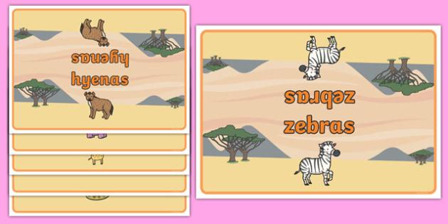 Editable Class Group Table Signs (Safari Animals) - Safari Animals, group signs, group labels, group table signs, table sign, teaching groups, class group, class groups, table label