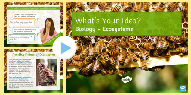 KS3 Ecosystems What's Your Idea? PowerPoint
