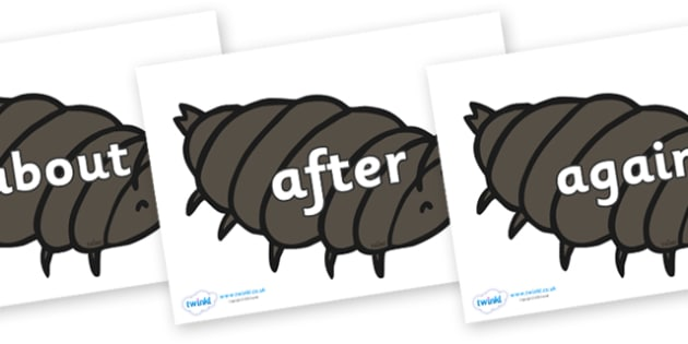KS1 Keywords on Woodlice - KS1, CLL, Communication language and literacy, Display, Key words, high frequency words, foundation stage literacy, DfES Letters and Sounds, Letters and Sounds, spelling