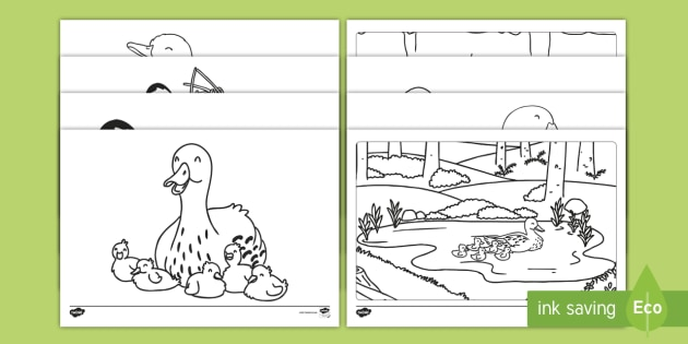 Ducks And Ducklings Coloring Pages Teacher Made