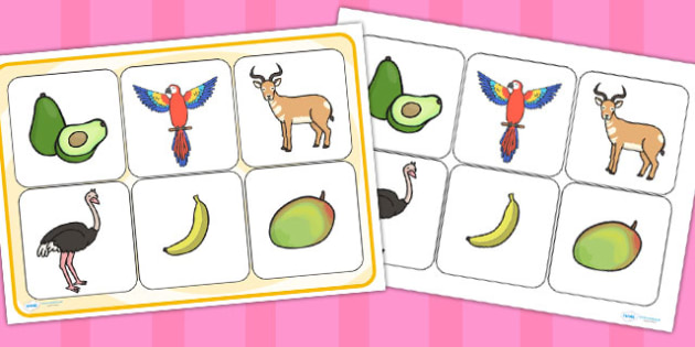 Matching Cards and Board to Support Teaching on Handa's Surprise - match, game, activity