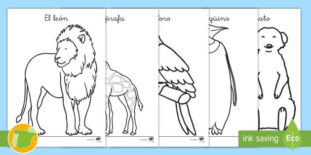 NEW * Hojas de colorear: Los animales del zoo - seres vivos, animal