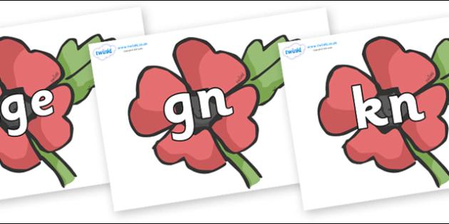 Silent Letters on Poppies - Silent Letters, silent letter, letter blend, consonant, consonants, digraph, trigraph, A-Z letters, literacy, alphabet, letters, alternative sounds