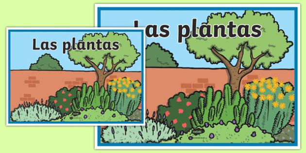 Cartel Las plantas