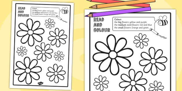 Flower Read and Colour Worksheet - flowers, plants, worksheets