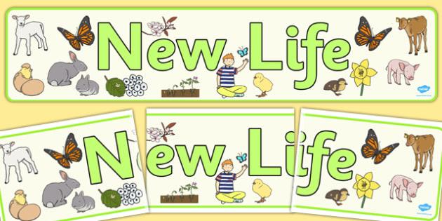 New Life Display Banner - display, banner, new, life, new life