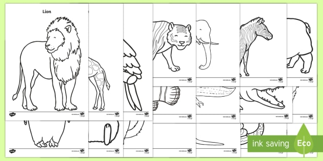 zoo animals colouring pages primary education resources. Black Bedroom Furniture Sets. Home Design Ideas