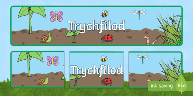 Baner Arddangosfa Trychfilod - Trychfilod, Minibeasts, insects, Wales, display, Welsh, Gwybodaeth a Dealltwriaeth o'r Byd, Gwyboda