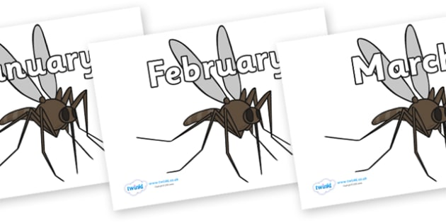 Months of the Year on Mosquitos - Months of the Year, Months poster, Months display, display, poster, frieze, Months, month, January, February, March, April, May, June, July, August, September
