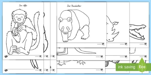 Zootiere Ausmalbilder Teacher Made