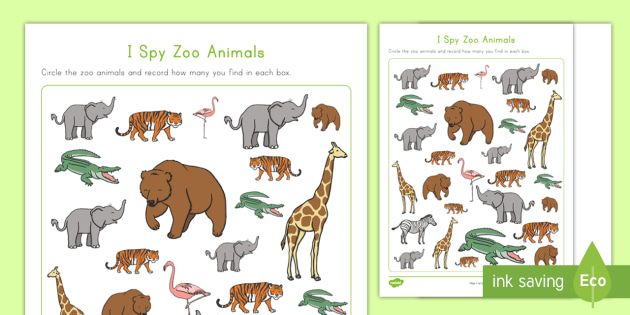 Zoo observations