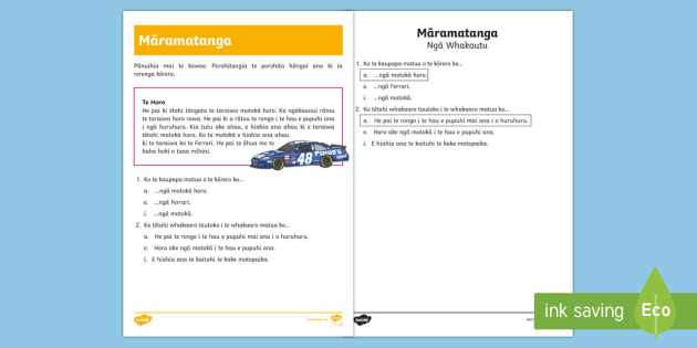 Speed Reading Comprehension Worksheet / Activity Sheet - Te Reo