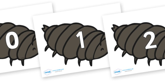 Numbers 0-31 on Woodlice - 0-31, foundation stage numeracy, Number recognition, Number flashcards, counting, number frieze, Display numbers, number posters