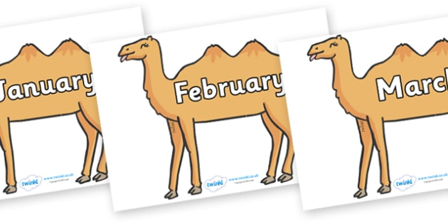 Months of the Year on Camels - Months of the Year, Months poster, Months display, display, poster, frieze, Months, month, January, February, March, April, May, June, July, August, September
