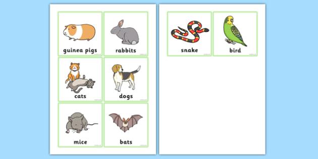 Animal Rescue Centre Mammal Badges - animal rescue centre, badges