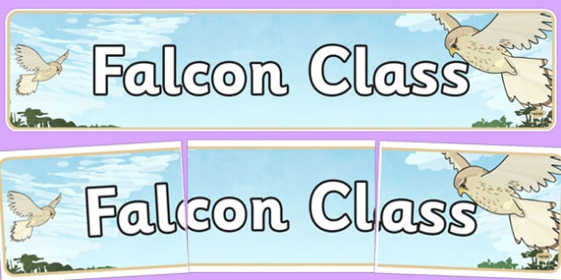 Falcon Class Display Banner - falcon class, display banner, display