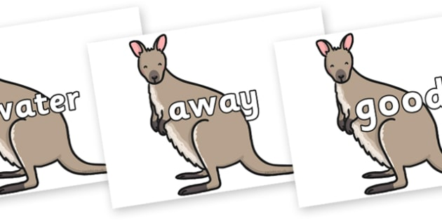 Next 200 Common Words on Wallaby - Next 200 Common Words on  - DfES Letters and Sounds, Letters and Sounds, Letters and sounds words, Common words, 200 common words