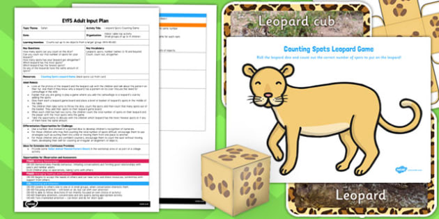 Leopard Spots Counting Game EYFS Adult Input Plan Resource Pack