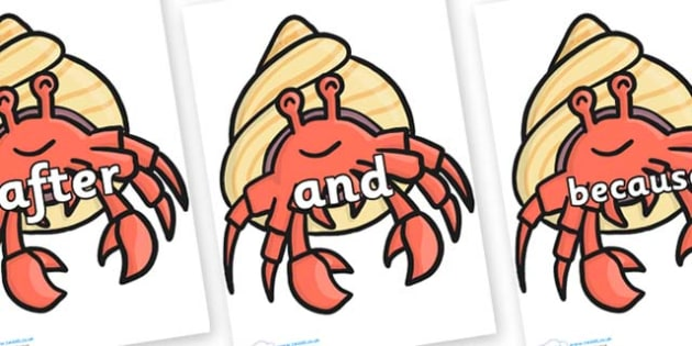 Connectives on Hermit Crabs - Connectives, VCOP, connective resources, connectives display words, connective displays
