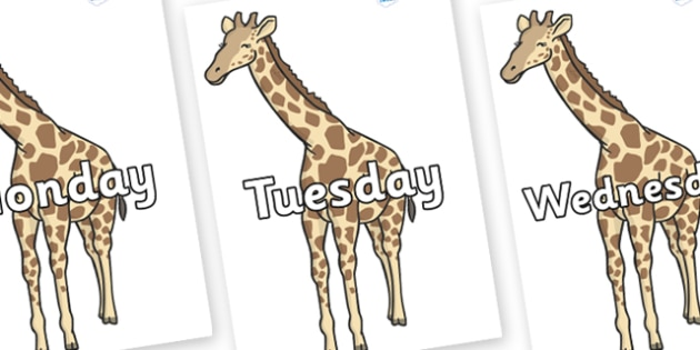 Days of the Week on Giraffe - Days of the Week, Weeks poster, week, display, poster, frieze, Days, Day, Monday, Tuesday, Wednesday, Thursday, Friday, Saturday, Sunday