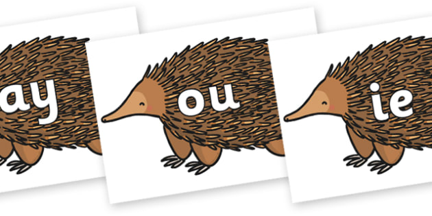 Phase 5 Phonemes on Echidna - Phonemes, phoneme, Phase 5, Phase five, Foundation, Literacy, Letters and Sounds, DfES, display