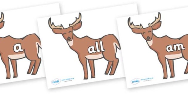Foundation Stage 2 Keywords on Deer - FS2, CLL, keywords, Communication language and literacy,  Display, Key words, high frequency words, foundation stage literacy, DfES Letters and Sounds, Letters and Sounds, spelling