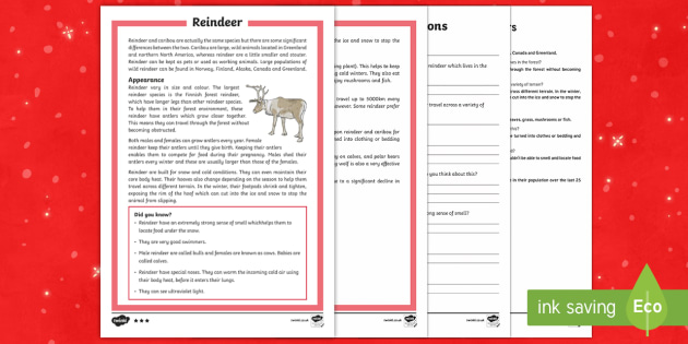 KS2 Reindeer Differentiated Reading Comprehension Activity - Christmas, Nativity, Jesus, xmas, Xmas, Father Christmas, Santa, reindeer, comprehension, Rudolph, c - Christmas, Nativity, Jesus, xmas, Xmas, Father Christmas, Santa, reindeer, comprehensi